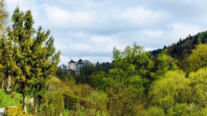 Zamek widziany z Ojcowa
