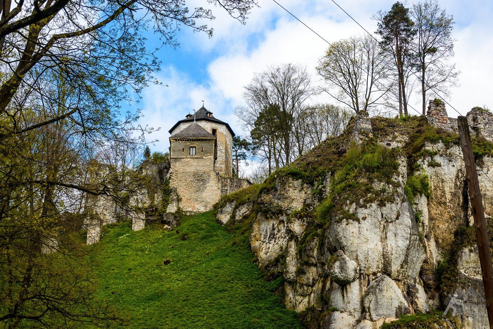 Zamek w Ojcowie wczesną wiosną