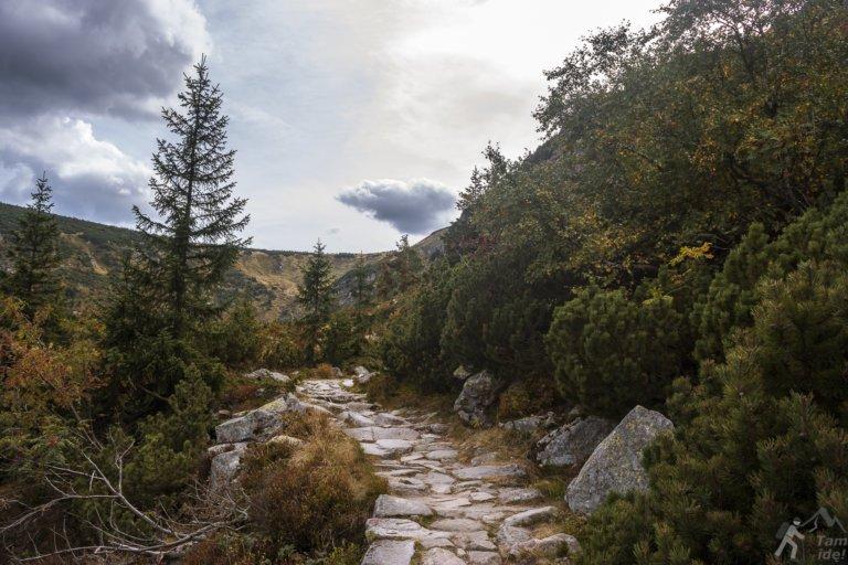 Szlak niebieski Karpacz Samotnia
