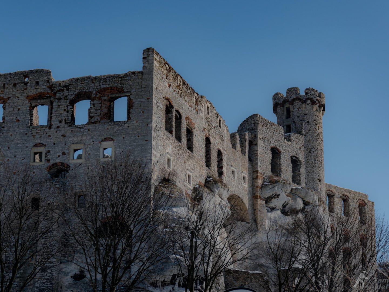 Mury zamku Ogrodzieniec widziane z okolicy wejścia na dziedziniec
