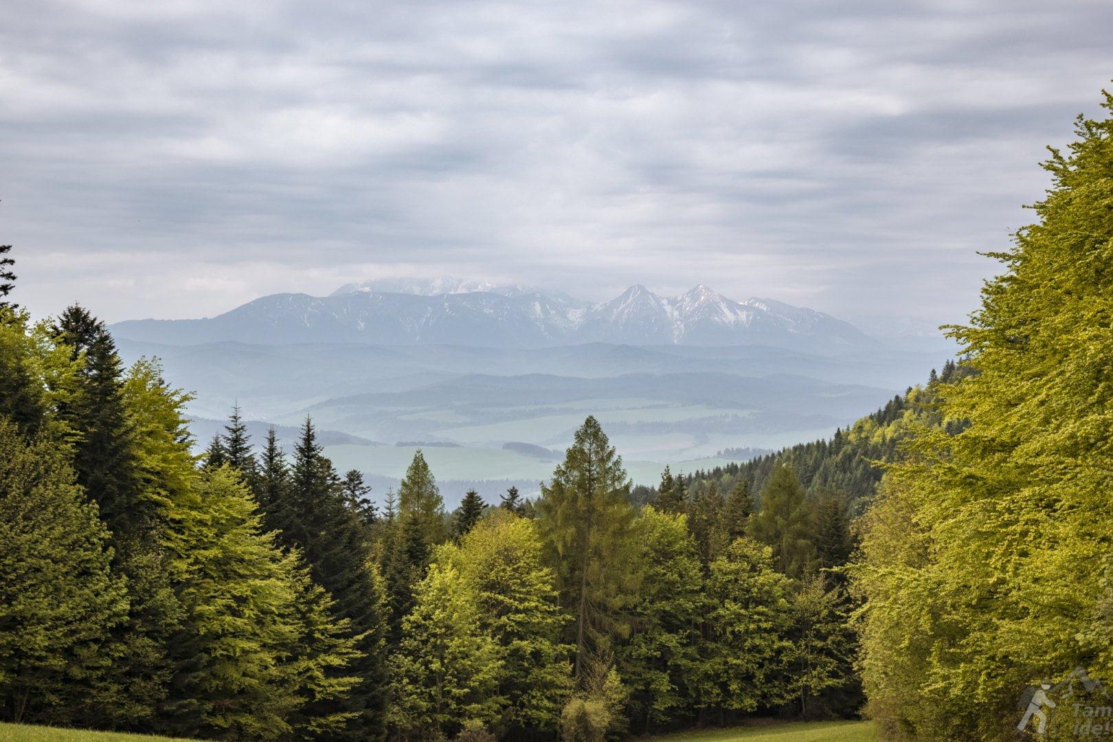 Przełęcz Szopka - Widok na Tatry