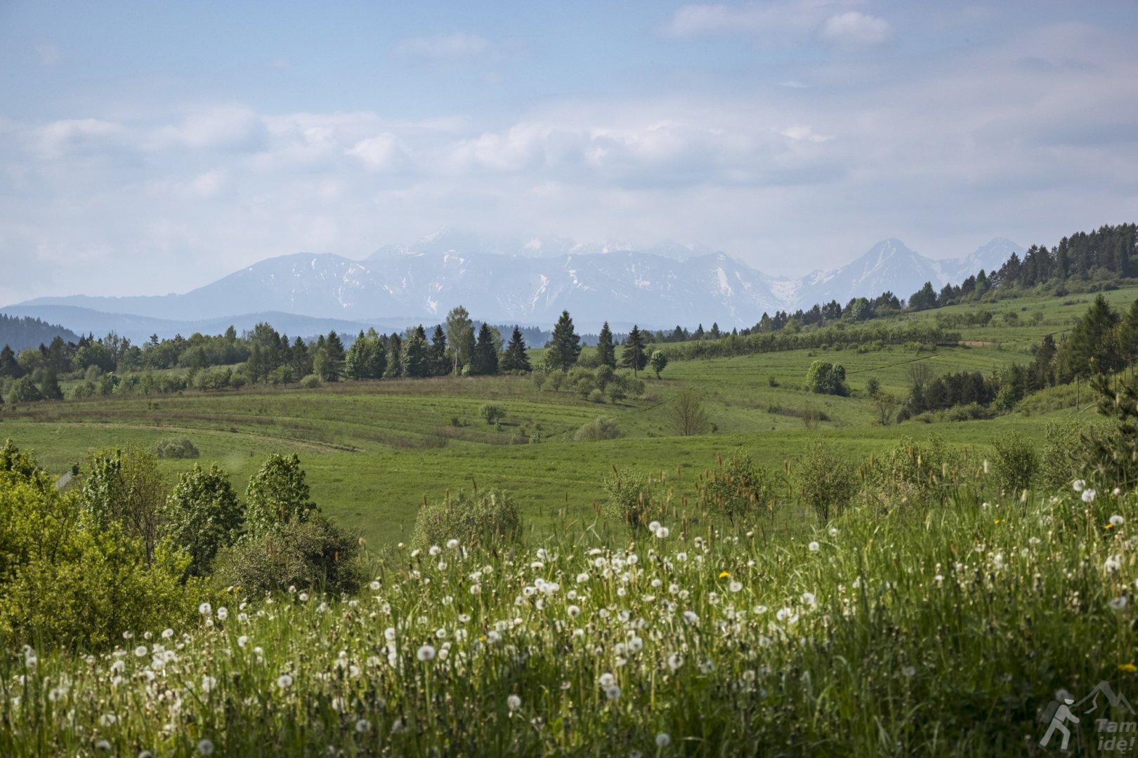 Widok na Tatry spod schroniska PTTK Trzy Korony