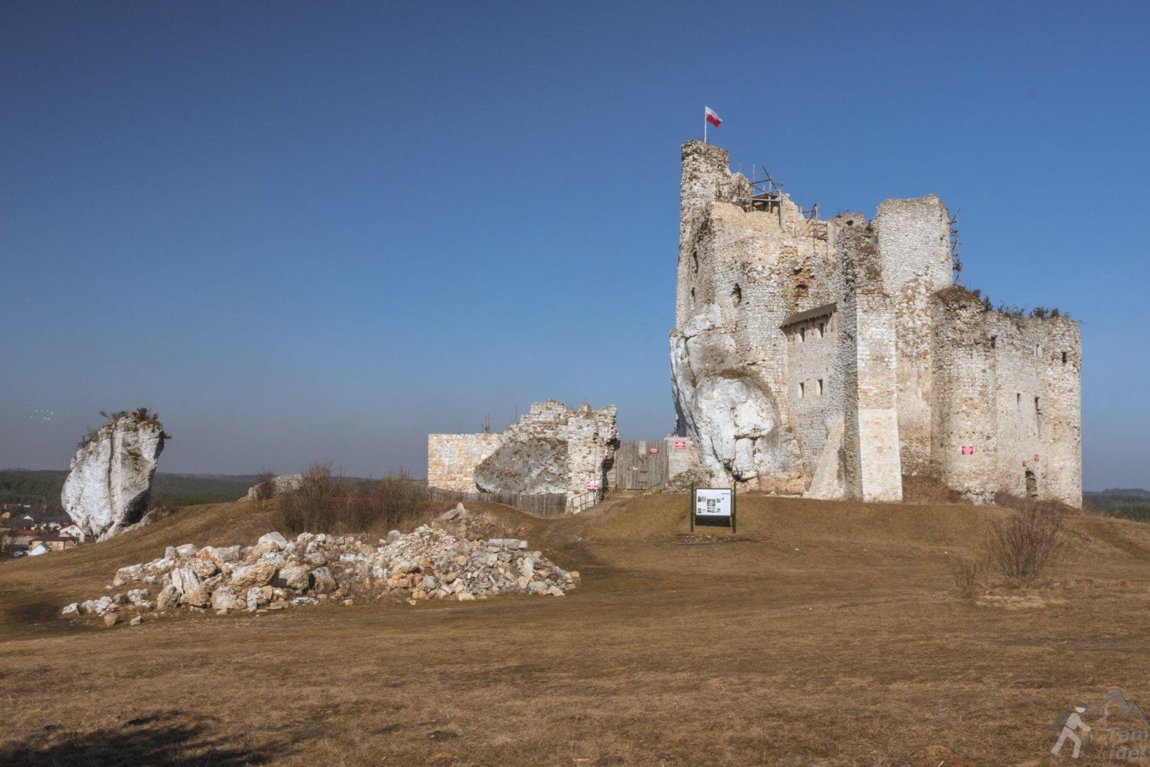 Widok na Zamek Mirów z czerwonego szlaku