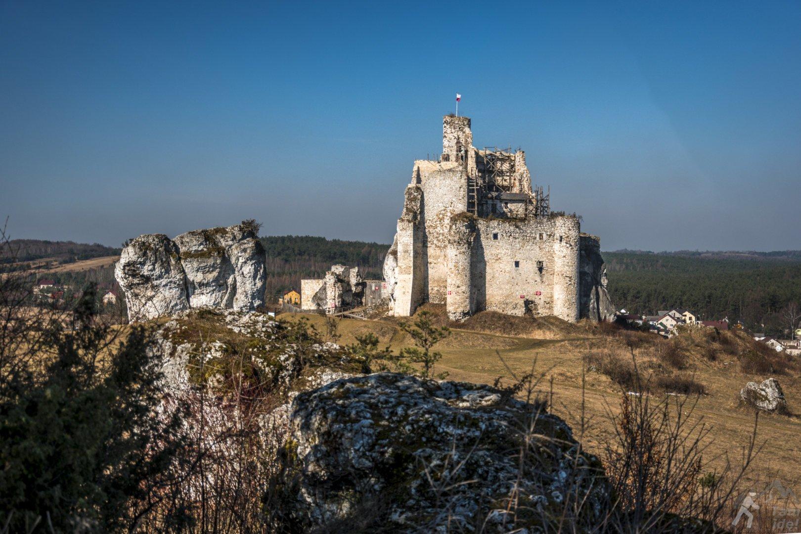 Widok na zamek w Mirowie z Grzędy Mirowskiej