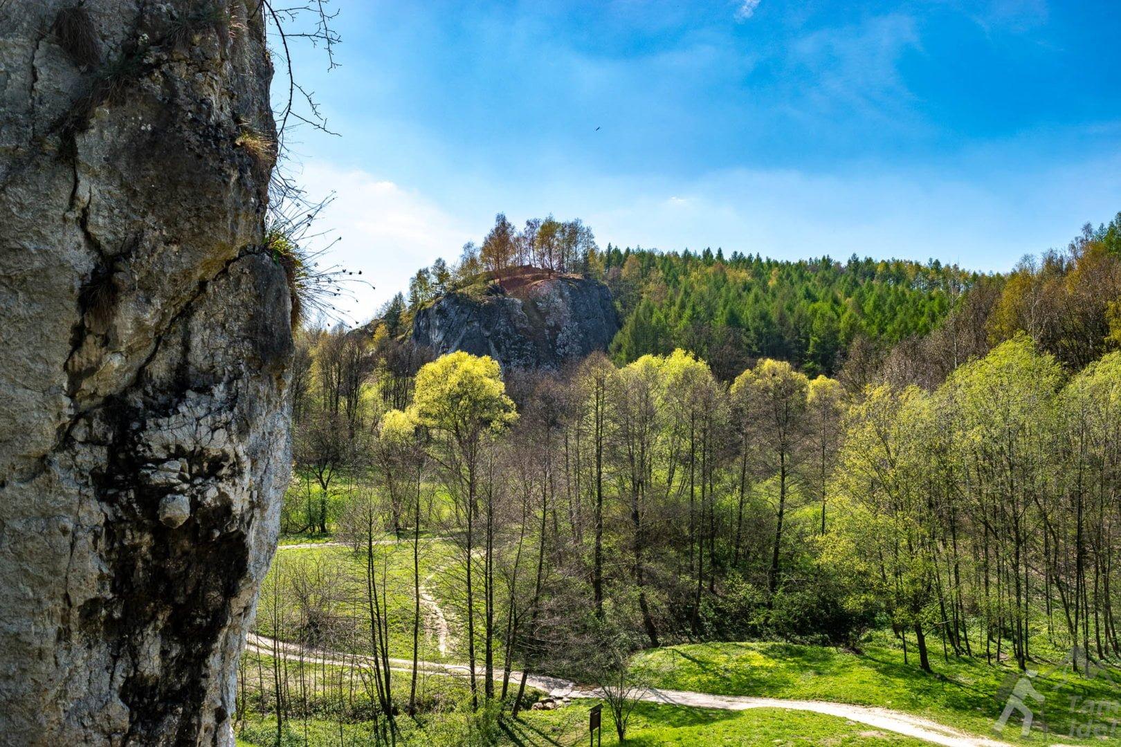 Dolina Kobylańska - Widok z Bramy Kobylańskiej