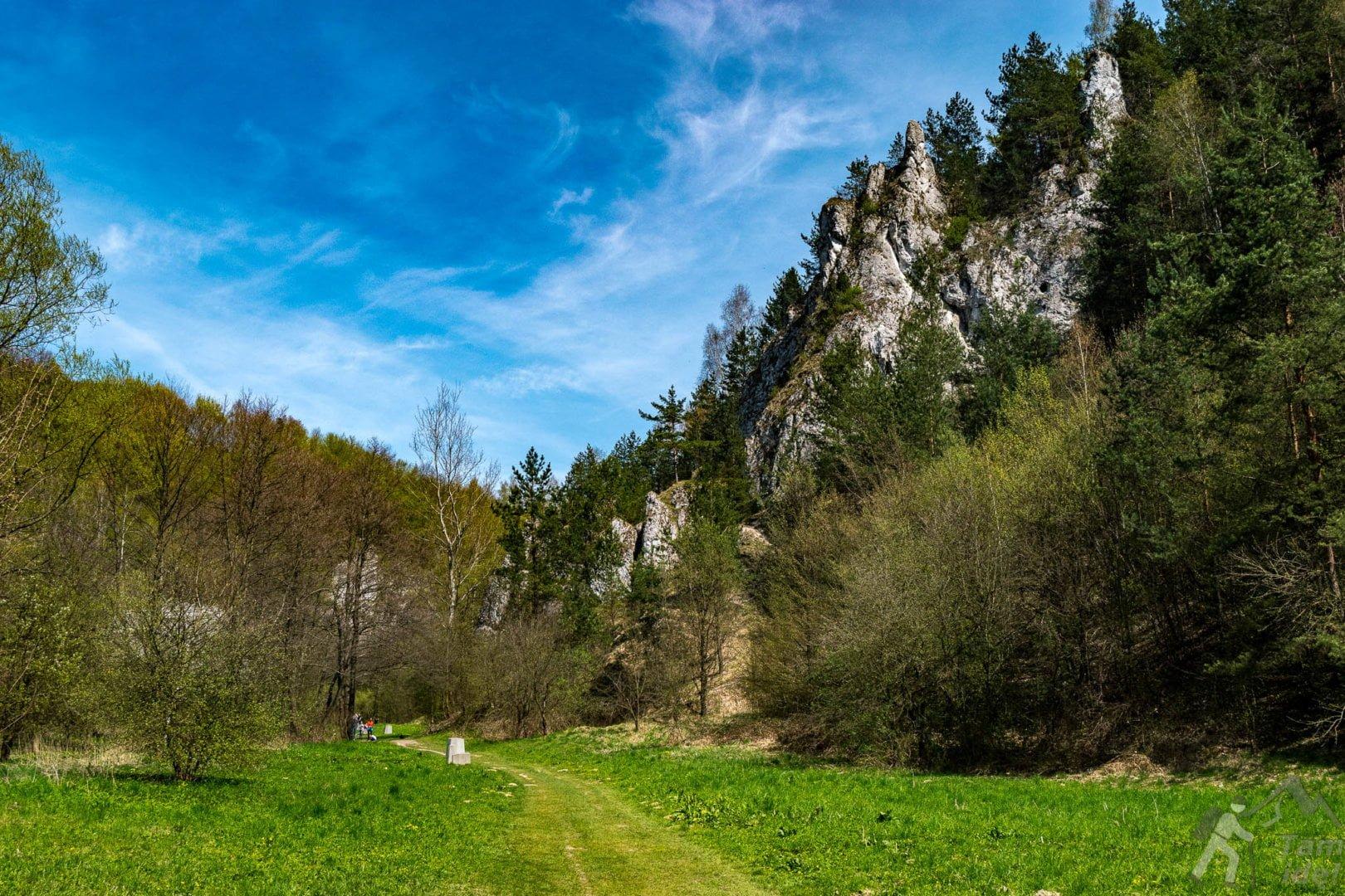 Dolina Kobylańska - Dwoista Turnia