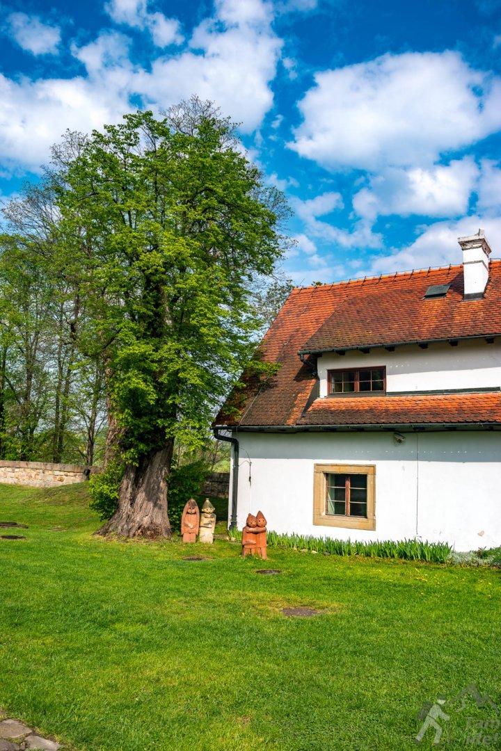 Zamek w Wiśniczu - dziedziniec