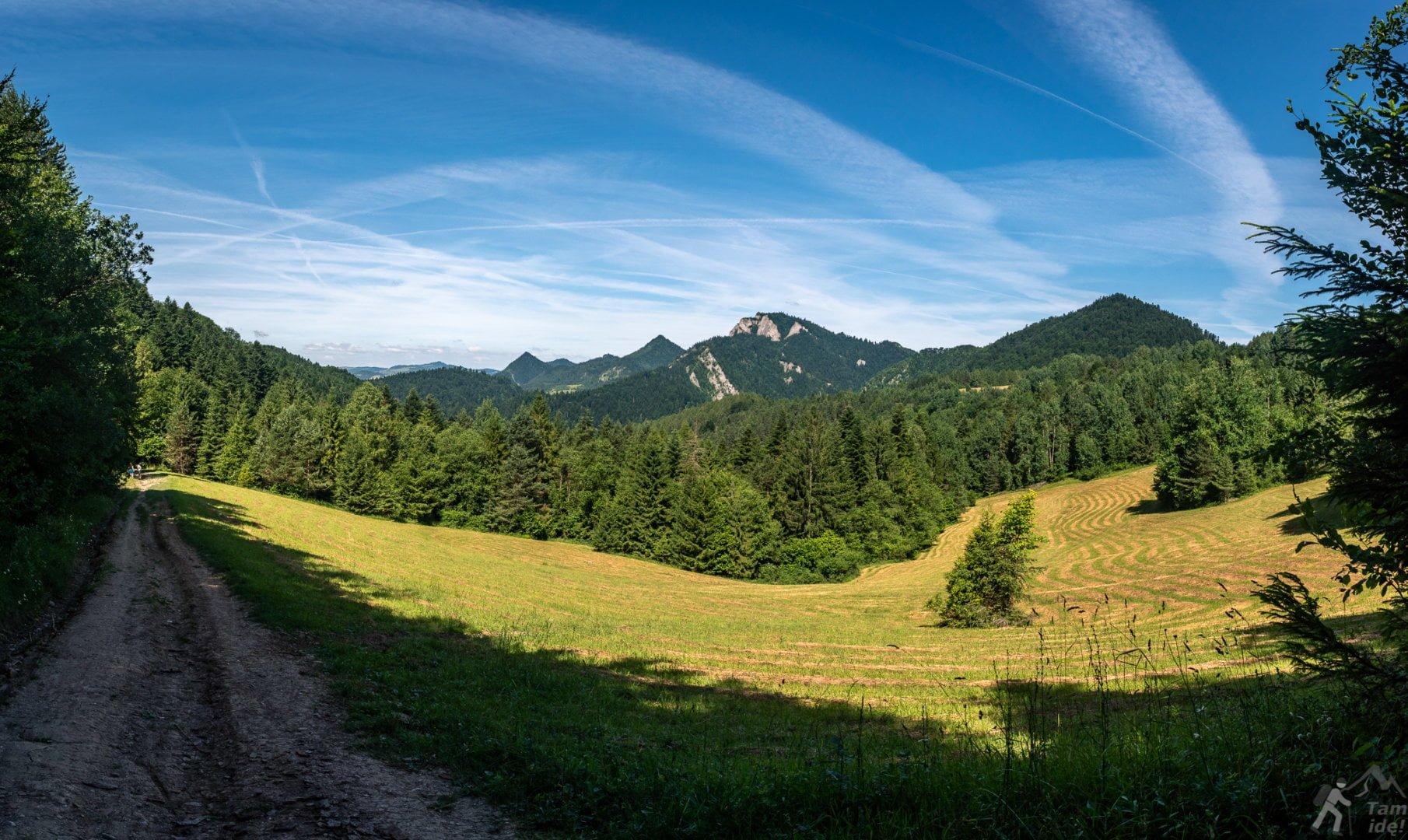 Trzy Korony widziane z niebieskiego szlaku z Leśnicy Do Czerwonego Klasztoru