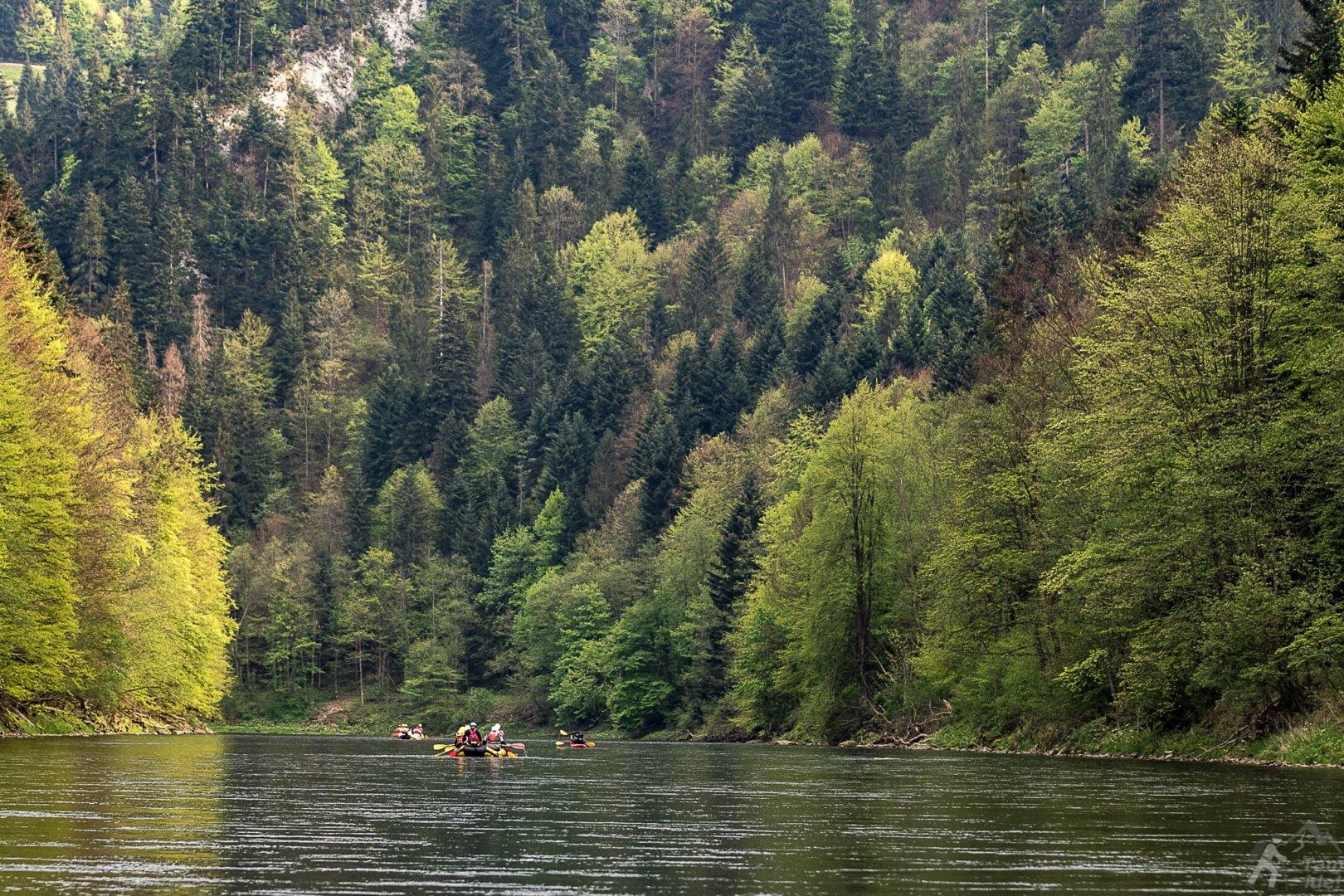 Spływ Dunajcem to nie tylko tratwy :)